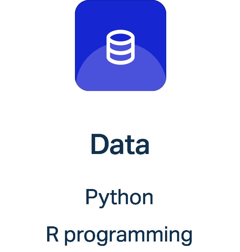 Data service with Kulkul Top developer in Indonesia