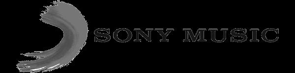 Sony Music WP in web development